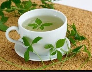 Jiaogulan gyógynövény tea ,maga a csoda